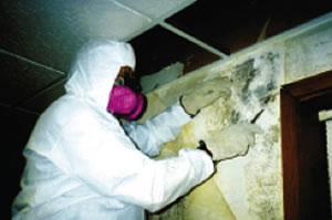 services-asbestos2
